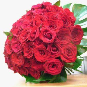 Buket 50 ruža