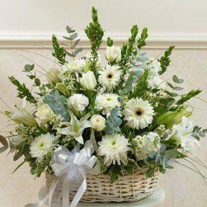 Belo Cveće u korpi 3