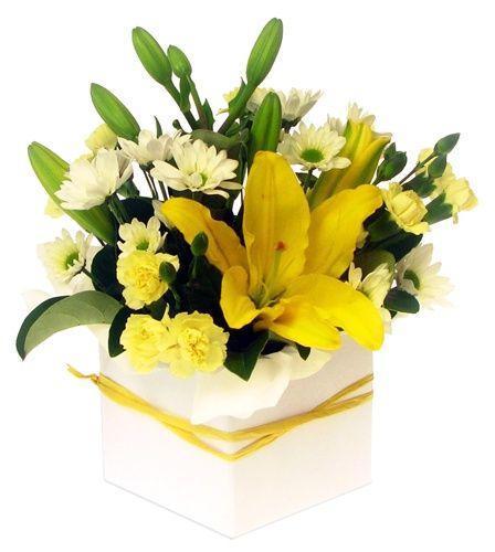 Mix flowers - CG
