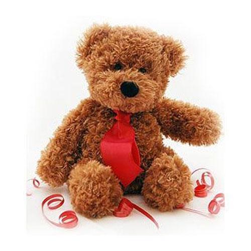 Gentleman teddy