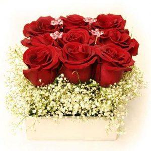 3x3 Roses