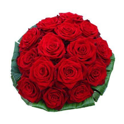 15 Ruža