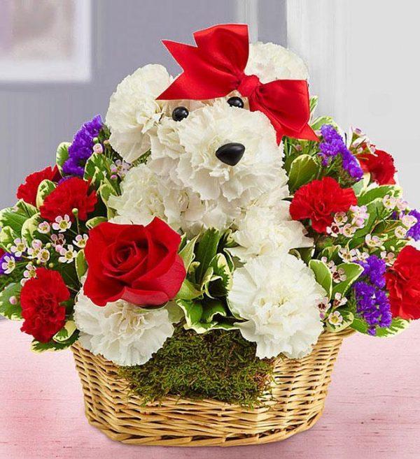 Životinje od cveća 003