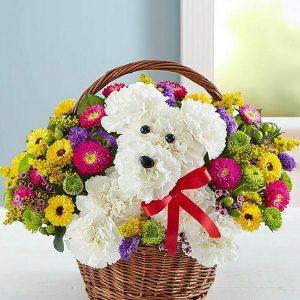 Životinje od cveća 008