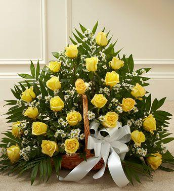 Žuta Korpa 2